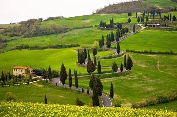 Tuscany - Vùng đất quyến rũ bậc nhất nước Ý [Photos] - anh 6
