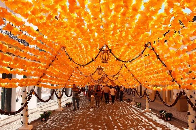 Ngắm Bồ Đào Nha rực rỡ trong Lễ hội Hoa ngập sắc màu - anh 2