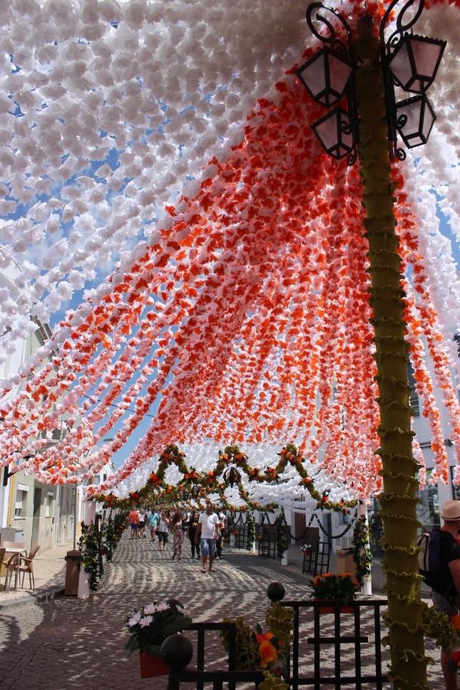 Ngắm Bồ Đào Nha rực rỡ trong Lễ hội Hoa ngập sắc màu - anh 3