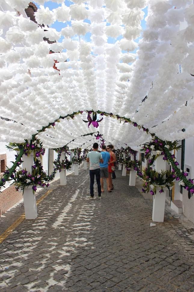 Ngắm Bồ Đào Nha rực rỡ trong Lễ hội Hoa ngập sắc màu - anh 6