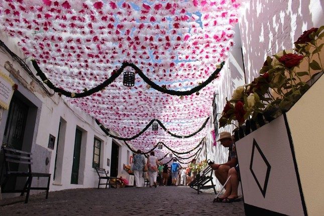Ngắm Bồ Đào Nha rực rỡ trong Lễ hội Hoa ngập sắc màu - anh 7