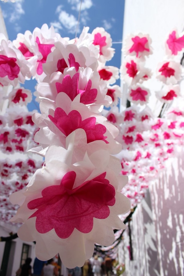 Ngắm Bồ Đào Nha rực rỡ trong Lễ hội Hoa ngập sắc màu - anh 8