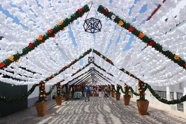 Ngắm Bồ Đào Nha rực rỡ trong Lễ hội Hoa ngập sắc màu - anh 9
