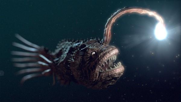 Hình dạng kỳ quái của những sinh vật sống nơi sâu nhất Trái đất - anh 2