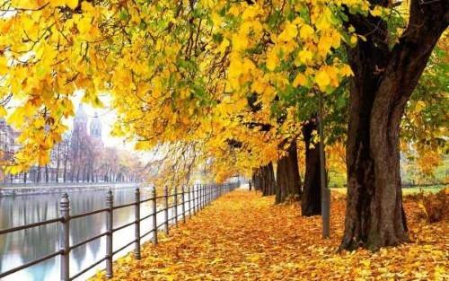 Ngây ngất trước 10 con đường mùa Thu đẹp nhất thế giới - anh 7