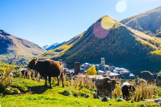 Vẻ đẹp cổ kính của ngôi làng cao nhất châu Âu - anh 6