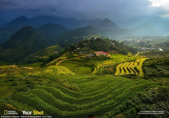 Ruộng bậc thang Việt Nam tuyệt đẹp trong Bộ ảnh của National Geographic - anh 1