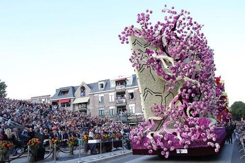 Mãn nhãn với Lễ hội hoa rực rỡ có 1-0-2 ở Hà Lan - anh 6