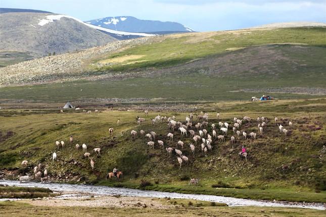Khám phá cuộc sống của dân du mục Tsaatan ở Mông Cổ - anh 20