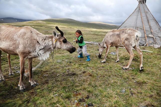 Khám phá cuộc sống của dân du mục Tsaatan ở Mông Cổ - anh 5