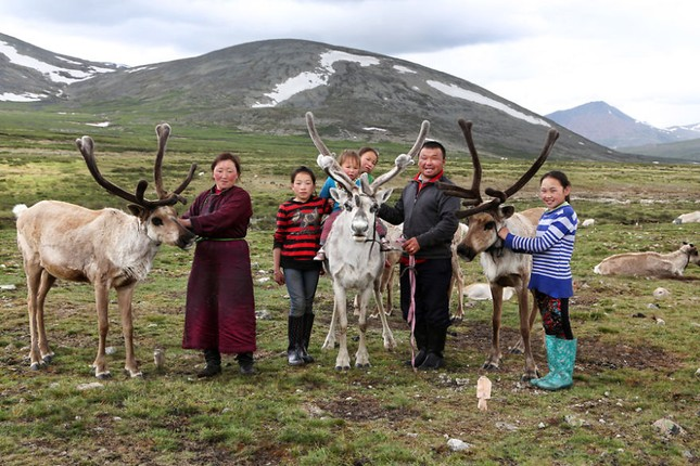Khám phá cuộc sống của dân du mục Tsaatan ở Mông Cổ - anh 10