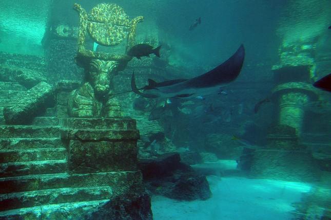 Sự mất tích bí ẩn của 5 thành phố cổ xưa trên Trái đất - anh 2