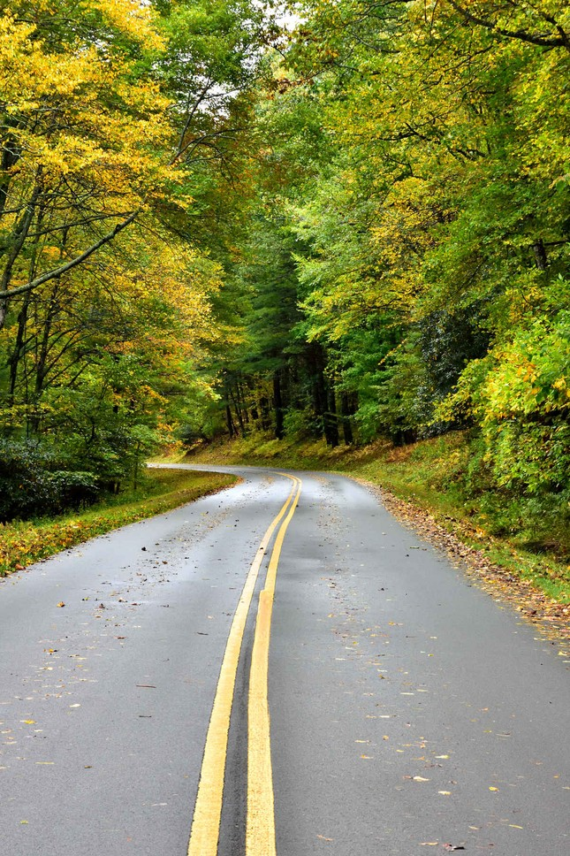 Ngắm mùa Thu tháng 10 đẹp đến ngỡ ngàng trên khắp thế giới - anh 14