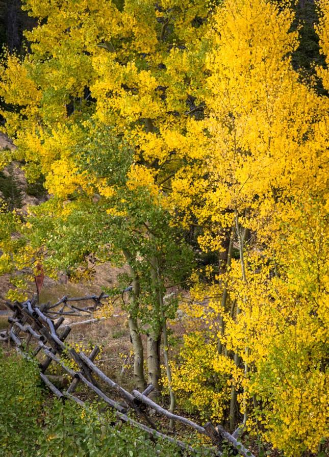 Ngắm mùa Thu tháng 10 đẹp đến ngỡ ngàng trên khắp thế giới - anh 9
