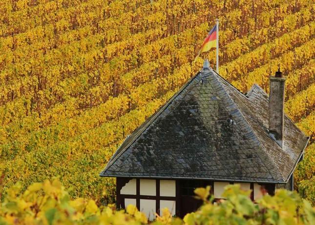 Ngắm mùa Thu tháng 10 đẹp đến ngỡ ngàng trên khắp thế giới - anh 15