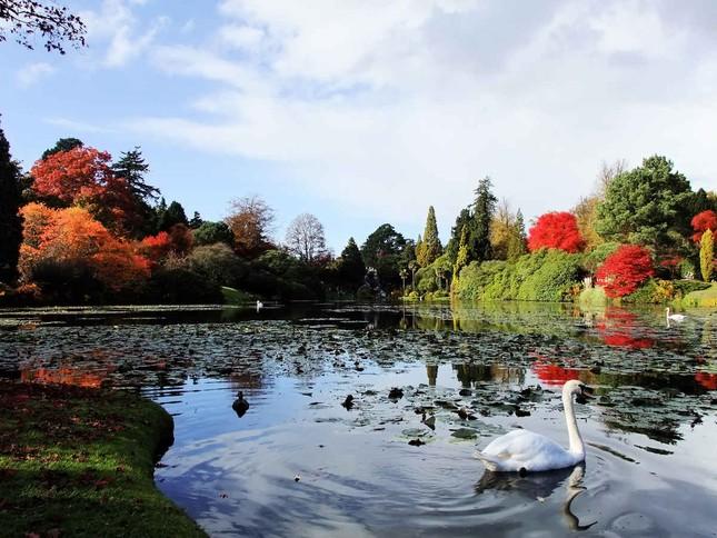 Ngắm mùa Thu tháng 10 đẹp đến ngỡ ngàng trên khắp thế giới - anh 16