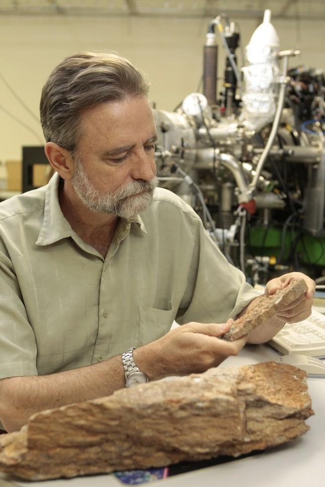 Sự sống trên Trái đất hình thành sớm hơn 300 triệu năm so với ước tính - anh 3