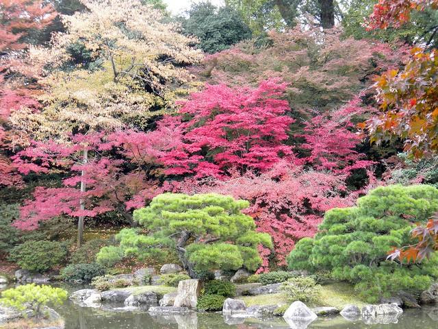 Ngắm sắc Thu đẹp ngỡ ngàng ở cố đô Kyoto, Nhật Bản - anh 8