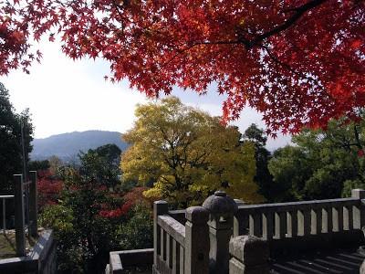 Ngắm sắc Thu đẹp ngỡ ngàng ở cố đô Kyoto, Nhật Bản - anh 2