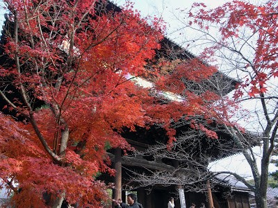 Ngắm sắc Thu đẹp ngỡ ngàng ở cố đô Kyoto, Nhật Bản - anh 3