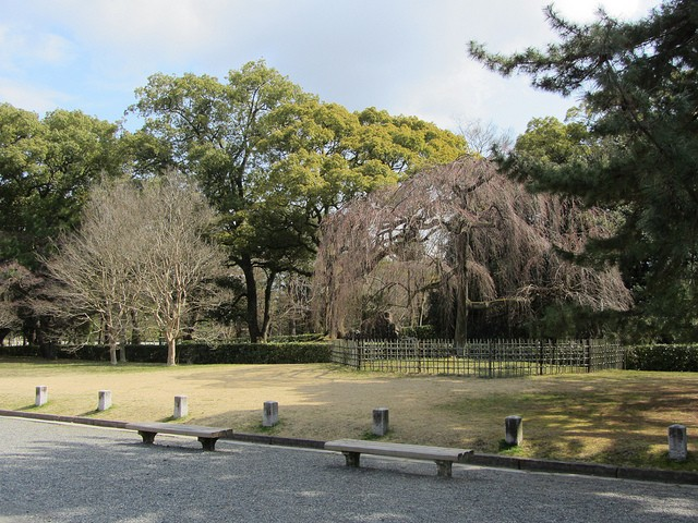 Ngắm sắc Thu đẹp ngỡ ngàng ở cố đô Kyoto, Nhật Bản - anh 6