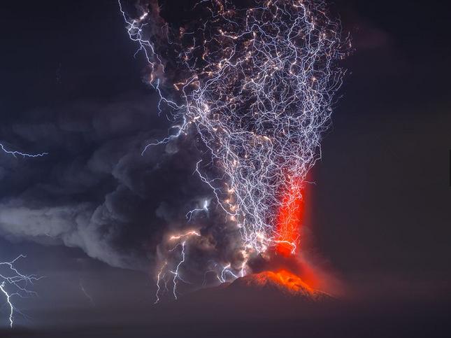 Thưởng thức bộ ảnh tuyệt đẹp trong cuộc thi Photo 2015 của National Geographic - anh 11