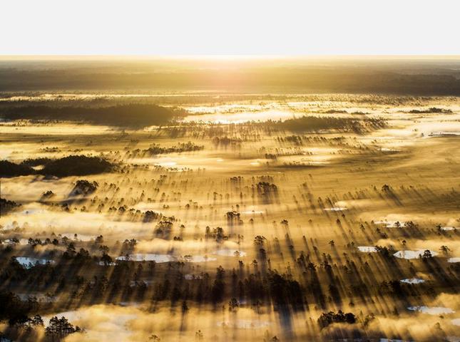 Thưởng thức bộ ảnh tuyệt đẹp trong cuộc thi Photo 2015 của National Geographic - anh 12