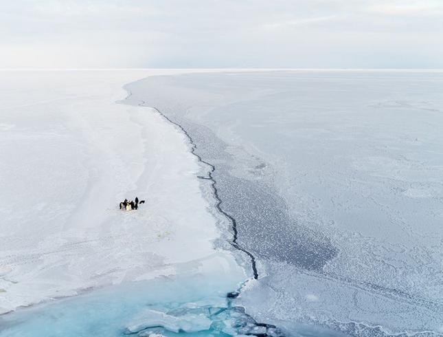Thưởng thức bộ ảnh tuyệt đẹp trong cuộc thi Photo 2015 của National Geographic - anh 15