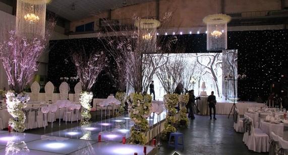 Khung cảnh tiệc cưới nguy nga như cung điện của Tâm Tít - anh 4