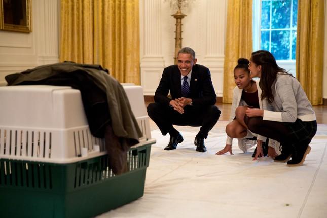 Toàn cảnh hoạt động của ông chủ Nhà Trắng năm 2014 - anh 53