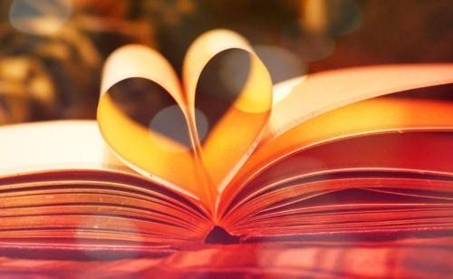 Top 10 bộ tiểu thuyết tình yêu lãng mạn nhất thế giới - anh 1