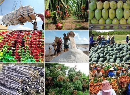 Tìm giải pháp tiêu thụ nông sản - anh 1