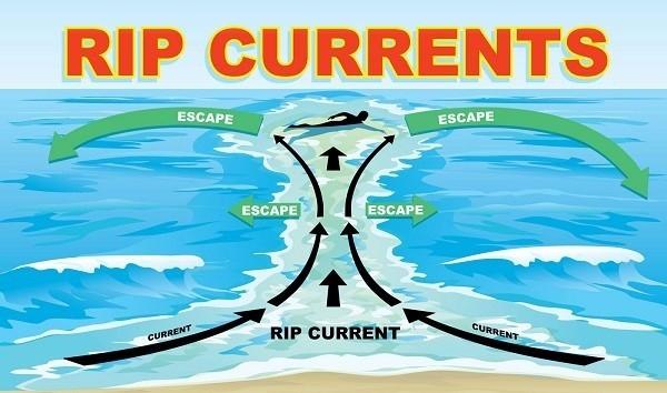 Dòng chảy xa bờ và những hiểm nguy khi tắm biển - anh 1