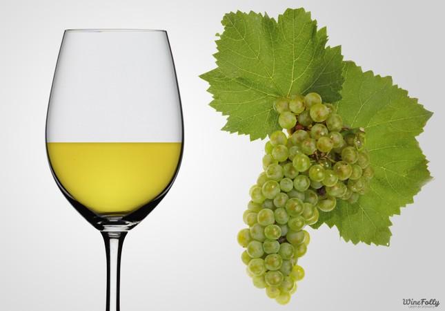 Chardonnay chinh phục thế giới - anh 2