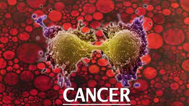 Phòng, chống ung thư từ những thói quen nhỏ - anh 1