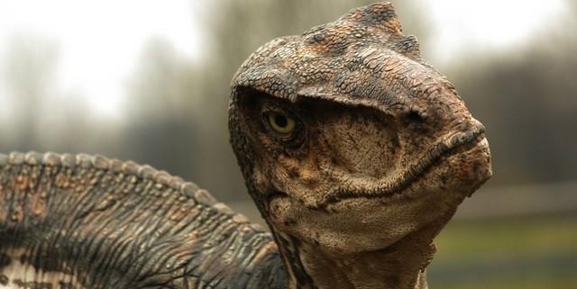 iFact Có thể bạn chưa biết: 10 sự thật bất ngờ về khủng long - anh 1
