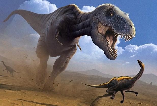 iFact Có thể bạn chưa biết: 10 sự thật bất ngờ về khủng long - anh 2