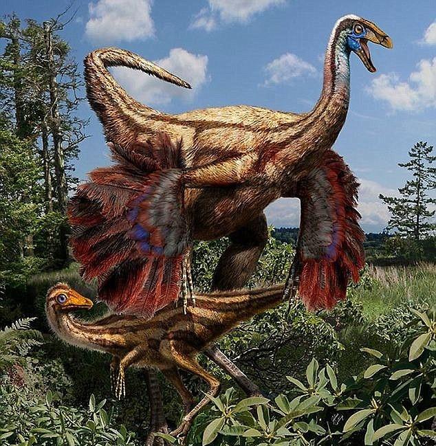 iFact Có thể bạn chưa biết: 10 sự thật bất ngờ về khủng long - anh 5