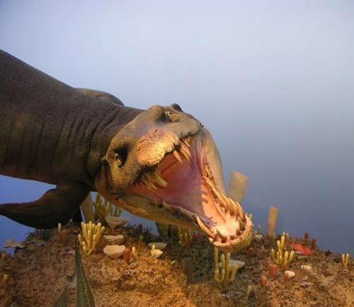 10 quái vật đáng sợ nhất thế giới trong lòng đại dương - anh 2