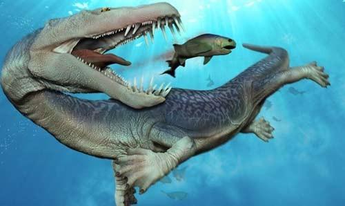 10 quái vật đáng sợ nhất thế giới trong lòng đại dương - anh 4