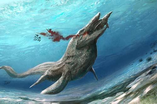 10 quái vật đáng sợ nhất thế giới trong lòng đại dương - anh 5