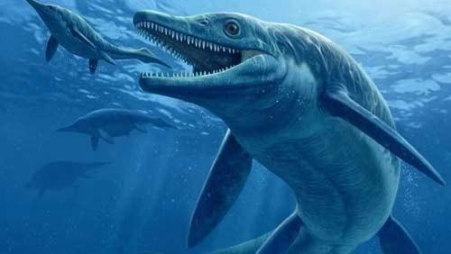 10 quái vật đáng sợ nhất thế giới trong lòng đại dương - anh 6