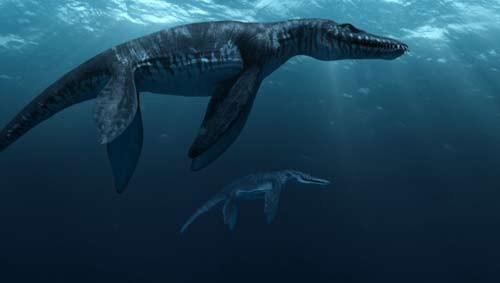 10 quái vật đáng sợ nhất thế giới trong lòng đại dương - anh 8