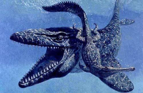 10 quái vật đáng sợ nhất thế giới trong lòng đại dương - anh 9