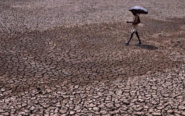 Nắng nóng hoành hành khắp thế giới năm 2015, hàng nghìn người thiệt mạng - anh 4