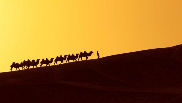 Sức mạnh bí ẩn của Đế chế Mông Cổ - Huyền thoại của những đế chế trong lịch sử - anh 7