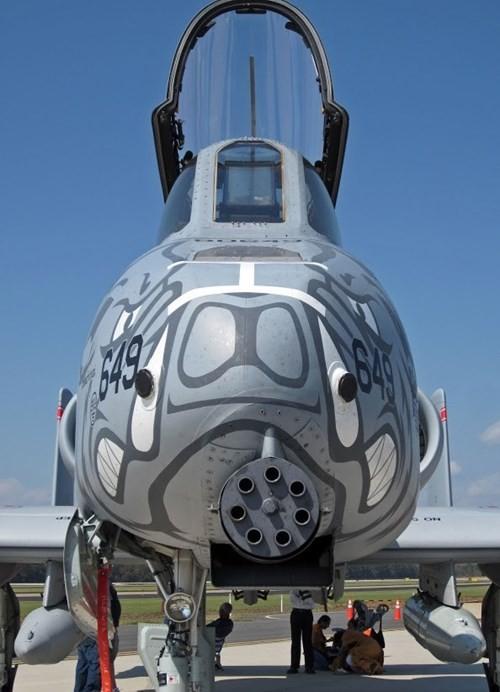 """Khám phá sức mạnh """"Thần sấm"""" A-10 Thunderbolt của Không quân Mỹ - anh 3"""