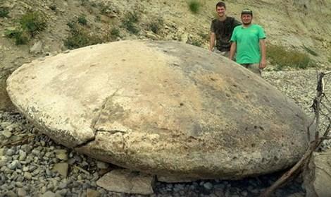 """Phát hiện """"hóa thạch UFO"""" một triệu năm tuổi? - anh 1"""