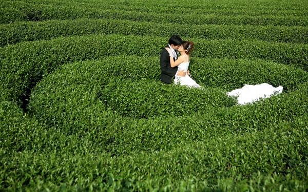 Những địa điểm chụp ảnh cưới hoàn hảo trên khắp dải đất hình chữ S - anh 2