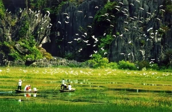 Ngơ ngẩn ngắm non nước mây trời di sản thiên nhiên thế giới Tràng An - anh 3